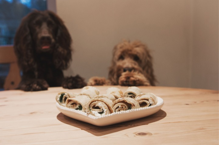 Dog friendly Pancakes