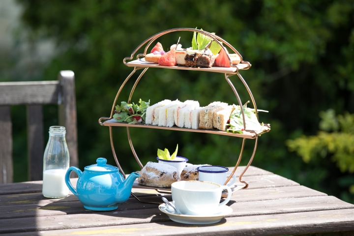 Dog Afternoon tea – Widbrook Grange